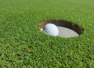 Golf ball sitting in a hole on a green.