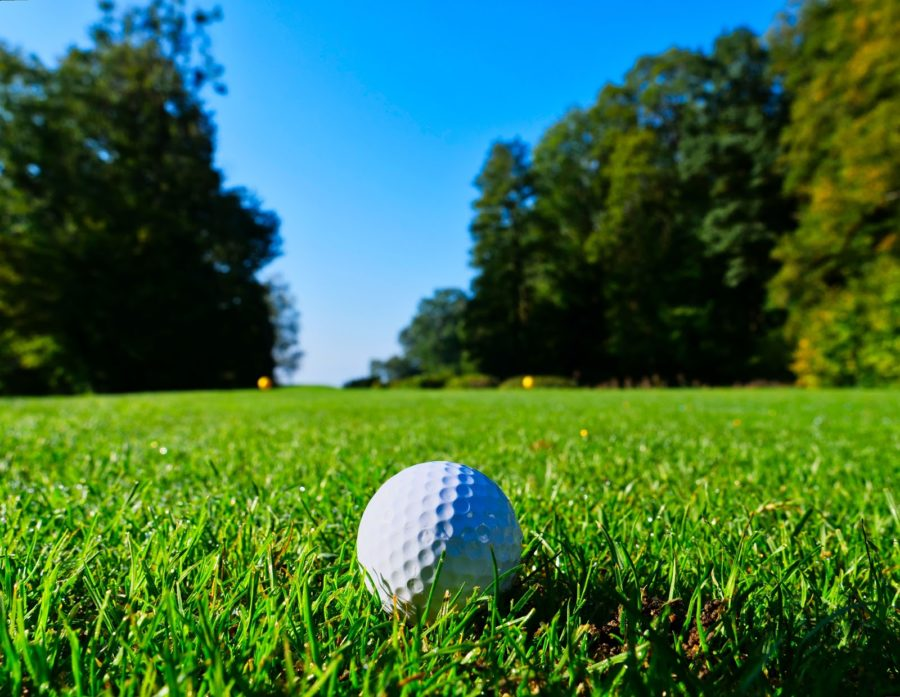Why Buy Used Golf Balls?