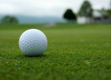 Golf ball on a green.