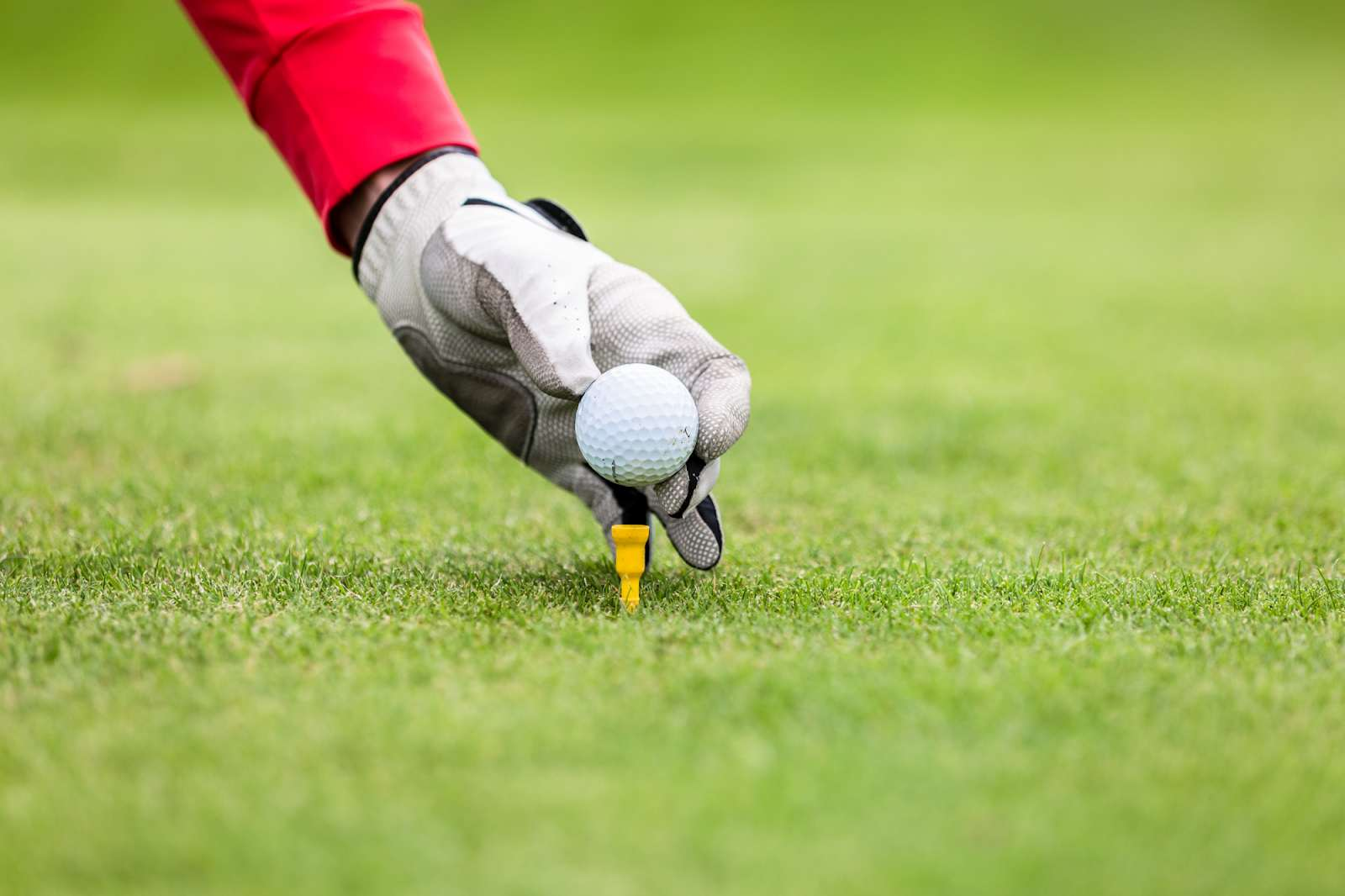 Gloved left hand placing a golf ball on a tee.